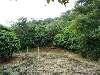 Terreno em Ilha de Guaratiba C/13.400m²